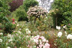 Gardens-Jamnuary