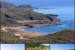Rocky Cape NP